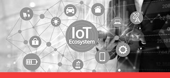 IOT , E-Vision , Software , Hardware